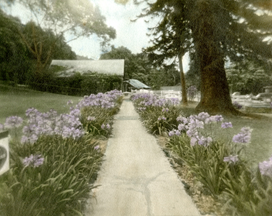 A Path Well-travelled - Hand Colored Silver Gelatin Photography by Gwen Arkin