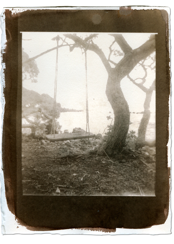 A Swing in Hana - Van Dyke Brown Photography by Gwen Arkin